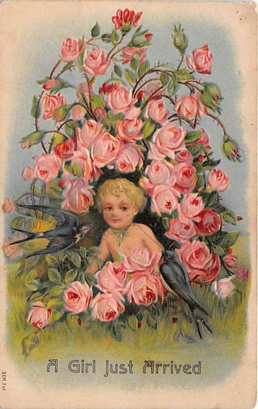 Early Baby Girl Birth Embossed Postcard Greeting Birds Pink Flowers ZZ384 | eBay