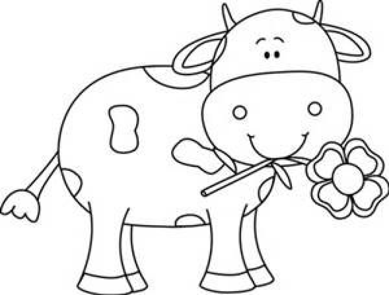 Cute BLACK AND WHITE animal Cow clipart, Cow coloring
