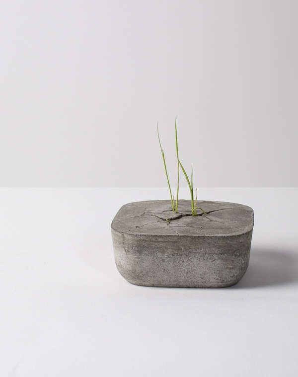 Cracked Footpath Planters - The Force Flower Pot Gives the Illusion that a Seedling Split Cement (GALLERY)