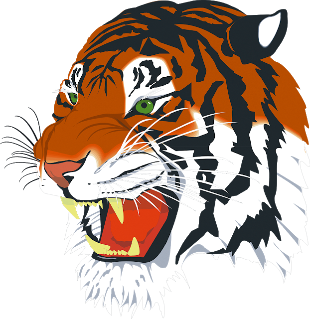 Tiger Png Vector Tiger Free Png Images Animal Symbolism Chinese History Image