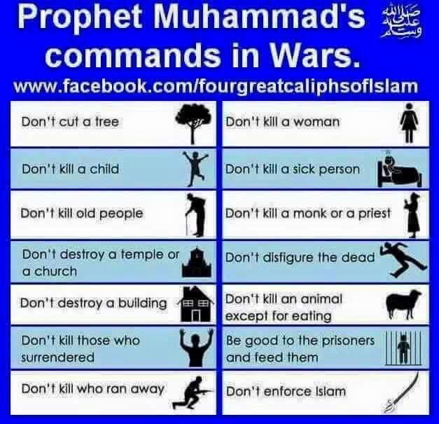 Pin on Islam1