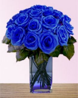 beautiful blue roses #blue #flowers #roses | for the home