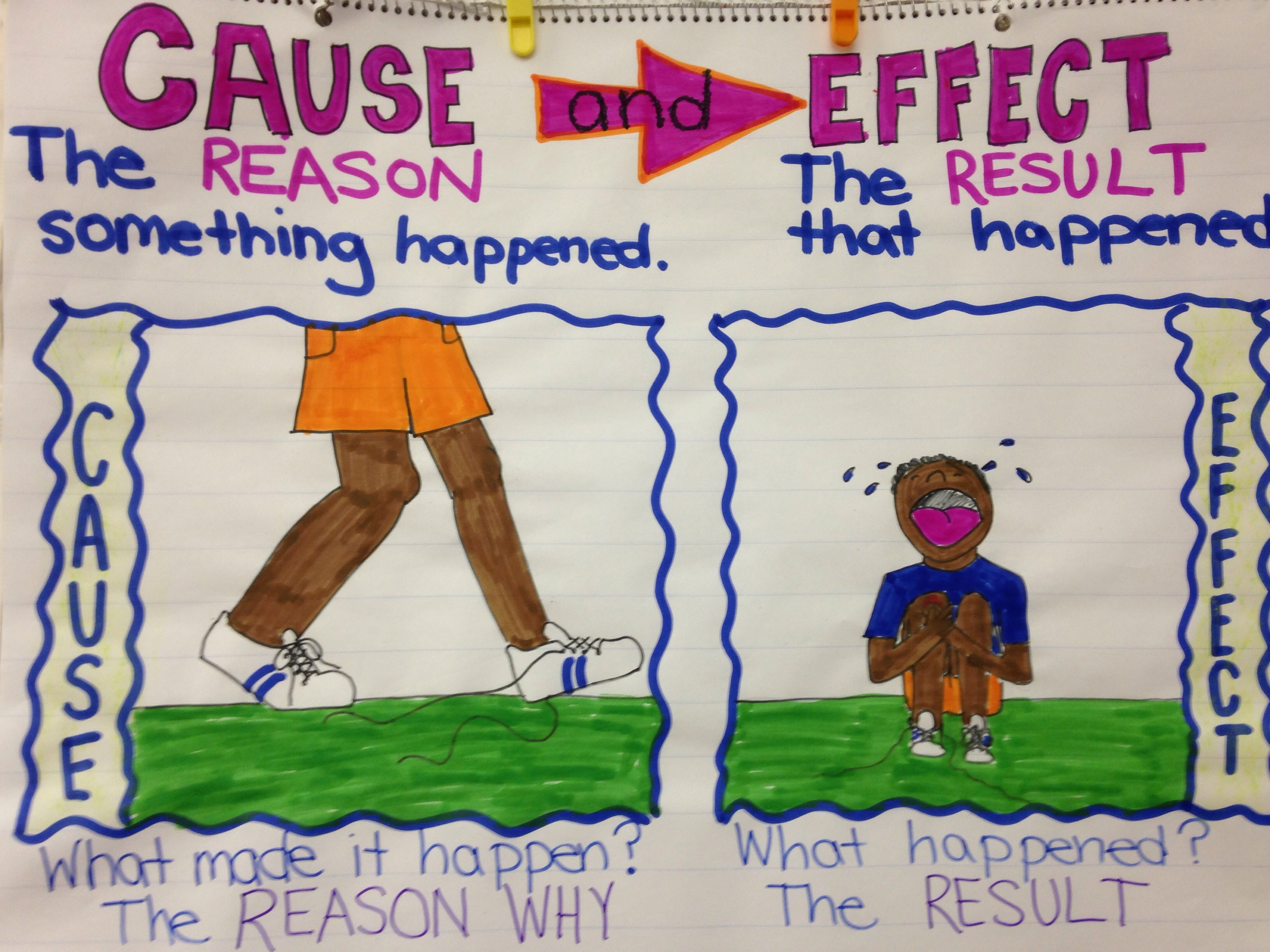 Week 5 Cause And Effect Second Grade