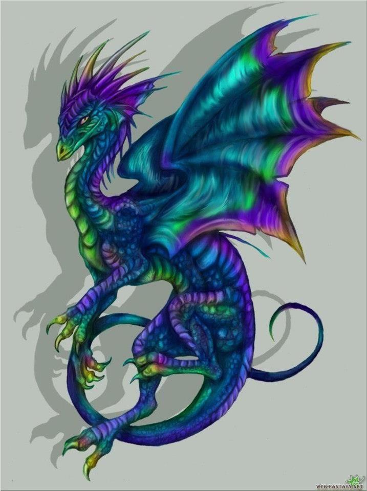 Western Dragons Drachen Tattoo Designs Drachenkunst Babydrache