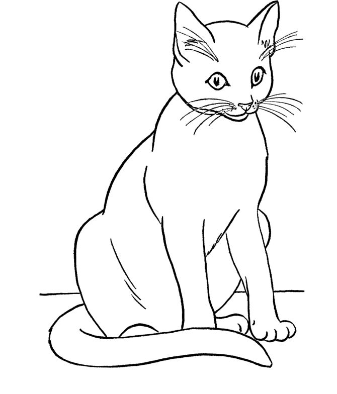 Cat Coloring Page | Coloring Pages | Pinterest | Colorear, Gato y 15 ...