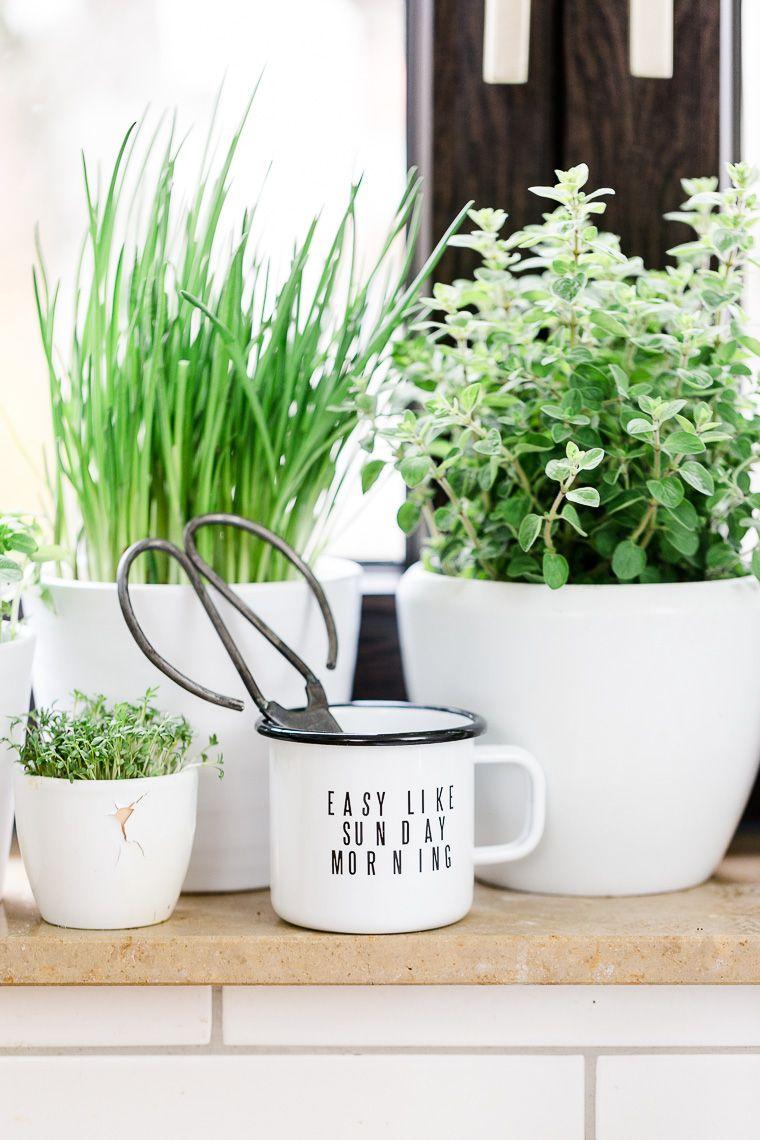 Ein Kräutergarten In Der Küche. Schaffe Deinen Eigenen Kleinen Urban Jungle  U2013 Zusammen Mit Etsy