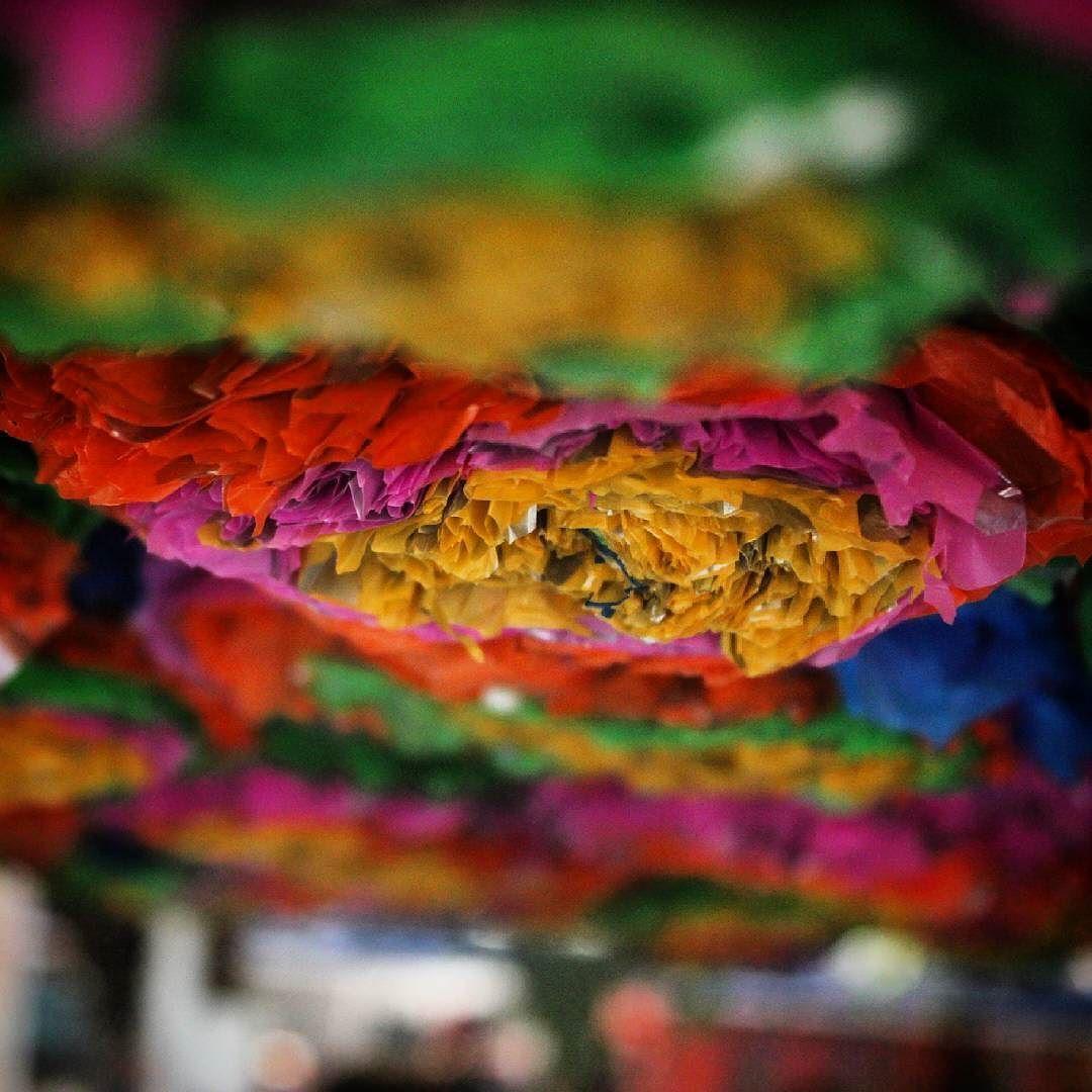 #waste #plastic #bags #kalaghoda #kalaghodaartfestival #kalaghodafestival #kalaghodafestival2016