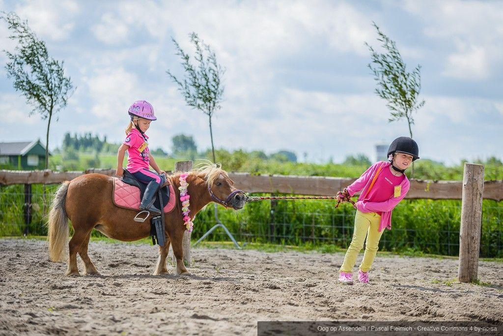 De Bonte Belevenis Assendelft.Bonte Belevenis Tijdens De Ponykampdagen Bij Pony En