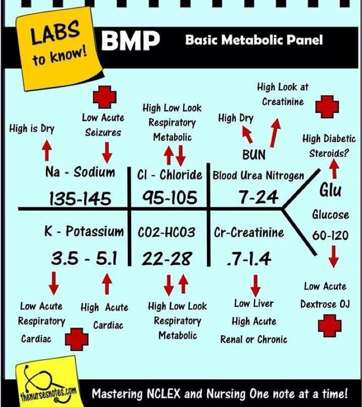 Common Metabolic Panel for Nursing Clinicals QD Nurses ...