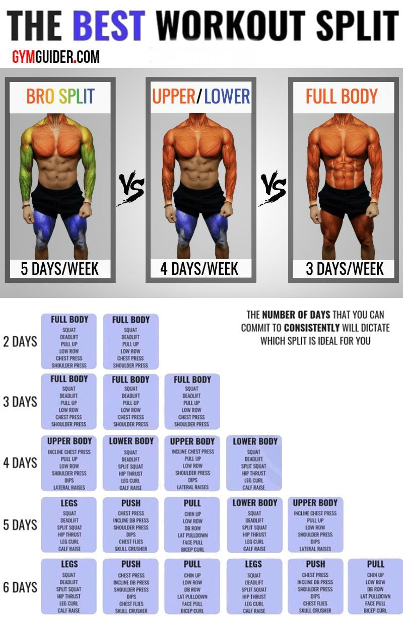 Build Muscle And Blast Fat With The Push Pull Workout Plan - GymGuider.com