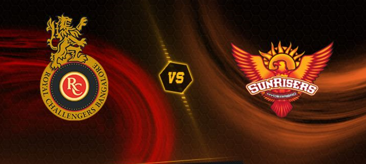 IPL Final 2016 Royal Challengers Bangalore vs Sunrisers Hyderabad
