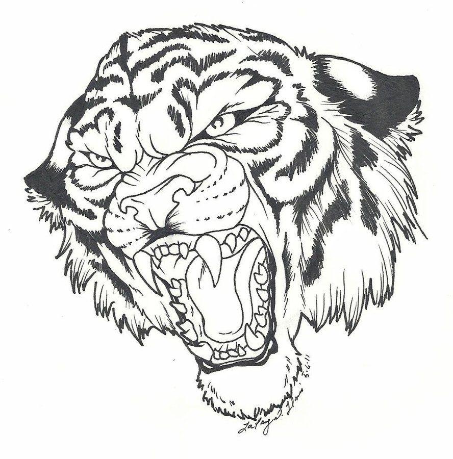 Roaring Tiger by BlvqWulph on DeviantArt