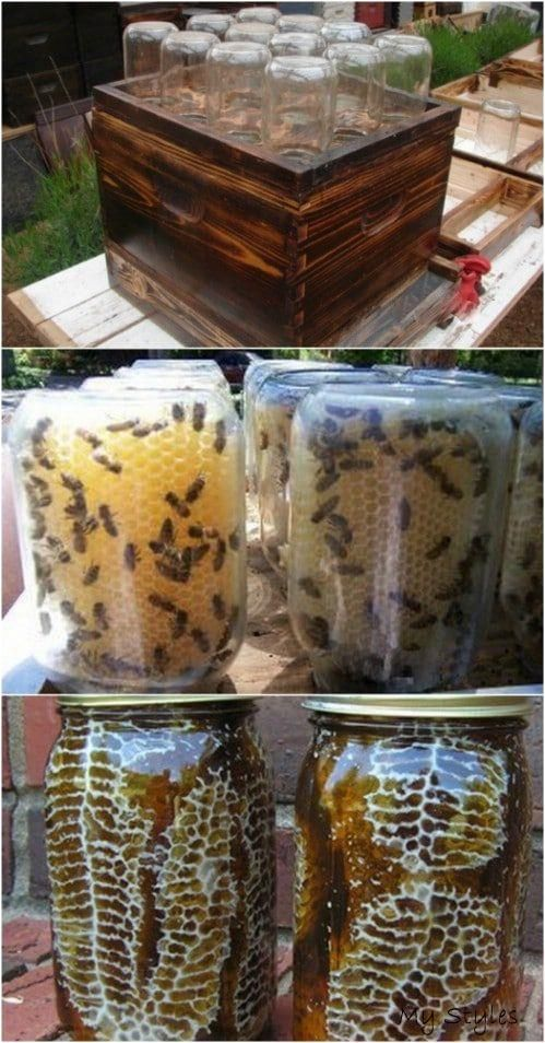 10 DIY Beehives You Can Add To Your Backyard Today in 2020 ...