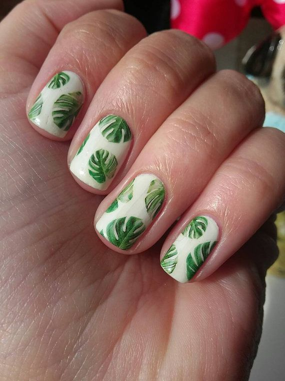 Monstera Deliciosa Nail Decals Cheese Plant Tropical Botanical Leaves Leaf Gardening In