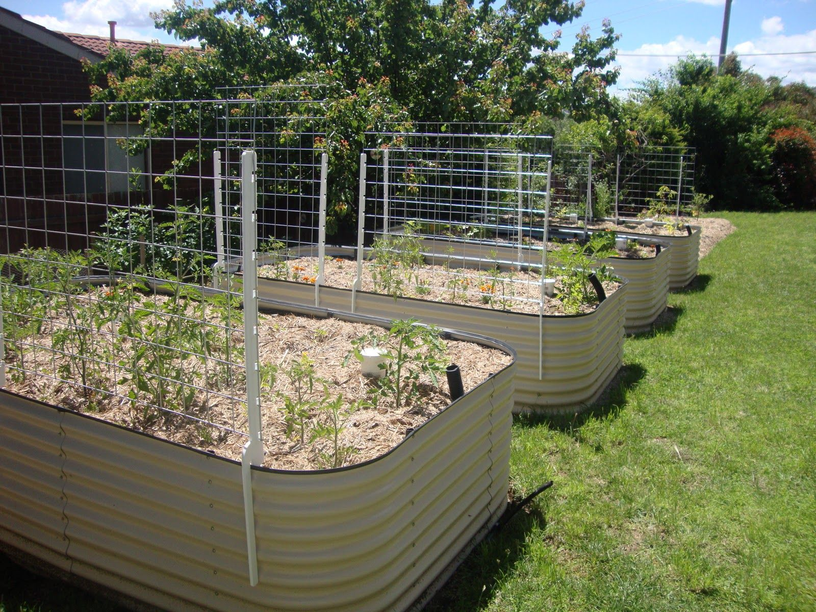 21 best wicking beds images on pinterest
