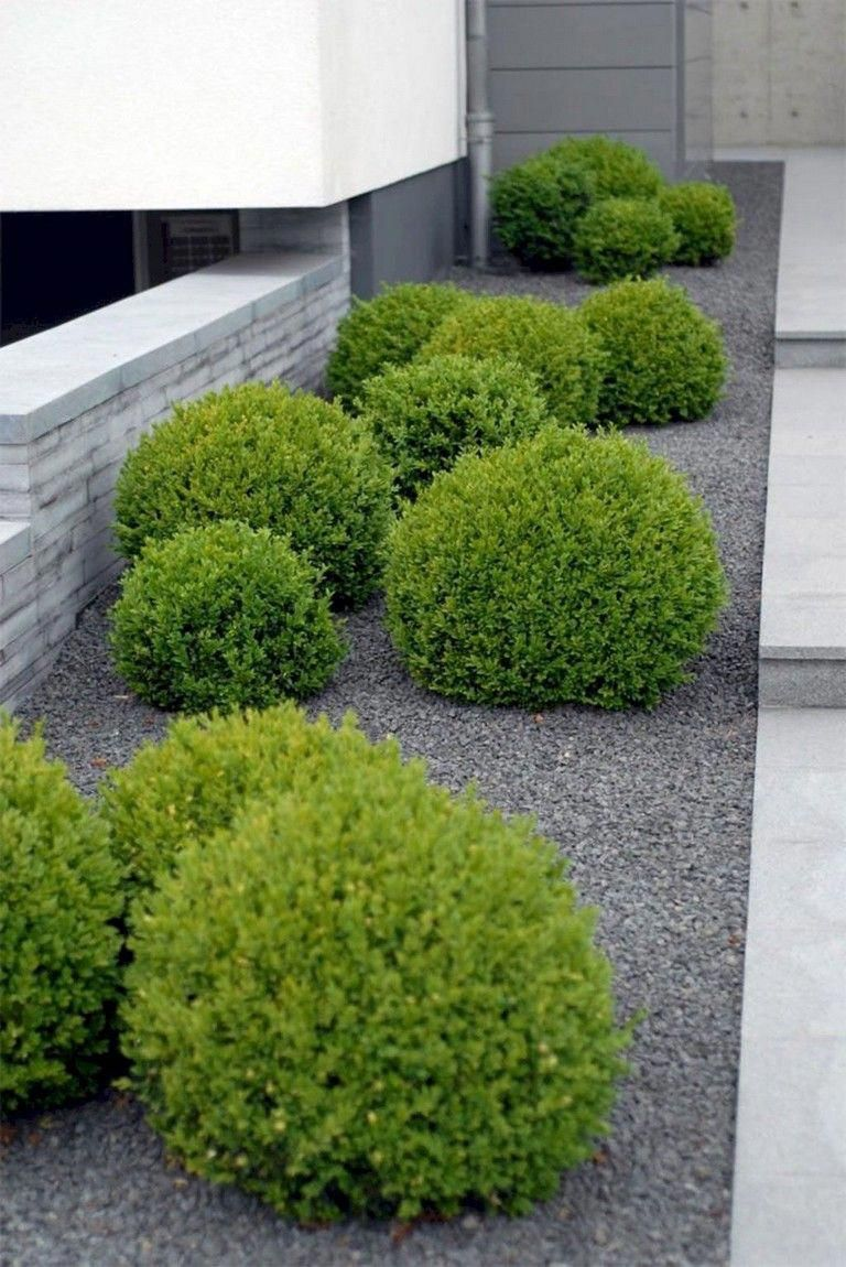 70 Brilliant Low Maintenance Front Yard Landscaping Ideas Page 47 Of 75 Ideas With Images Front Yard Landscaping Design Small Front Yard Landscaping Modern Landscaping