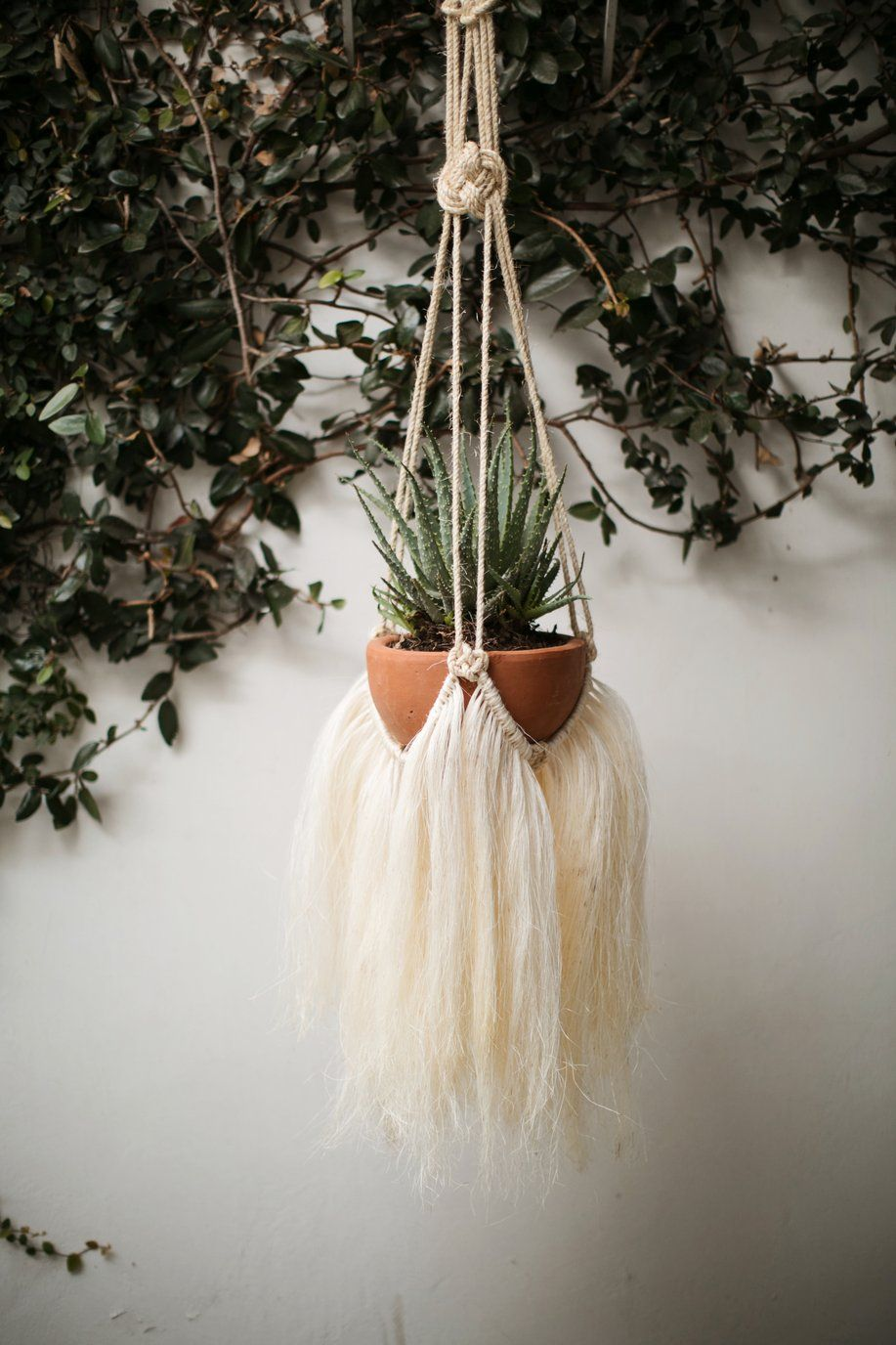 Henequen Macramé Plant Hanger is part of Diy plant hanger, Macrame plant hanger, Diy macrame plant hanger, Macrame plant hangers, Plant hanger, Macrame plant - Give your plants a new home in a jaw dropping macramé plant hanger  This super chic rendition of a macramé plant hanger is created using henequen sourced from the Yucatan  Sourcing the material is a laborious process  There are only a few henequen shredding farms that still exist in the Yucatan region  Once the agave is shredded the fibers are separated into long and short threads and vigorously combed to create the hairlike texture    Measurements 70  tall Planter not included  All items sold by Vía Raíz are handmade  Therefore they may have small  imperfections  or slight variations of color and design between each product—we think that is part of the beauty of having something made with care by individual artisans  Our website photos are a close representation of this piece, but may not be identical to the one you receive