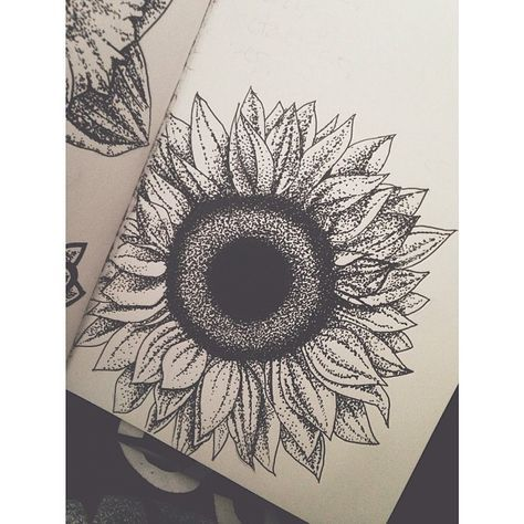 Sunflower Drawing Tumblr Google Search Tatuagens De Girassol