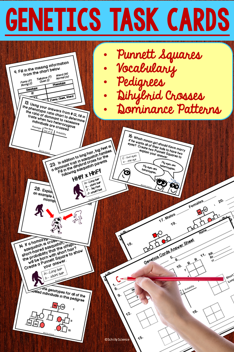 Task Cards Task cards, Middle school science