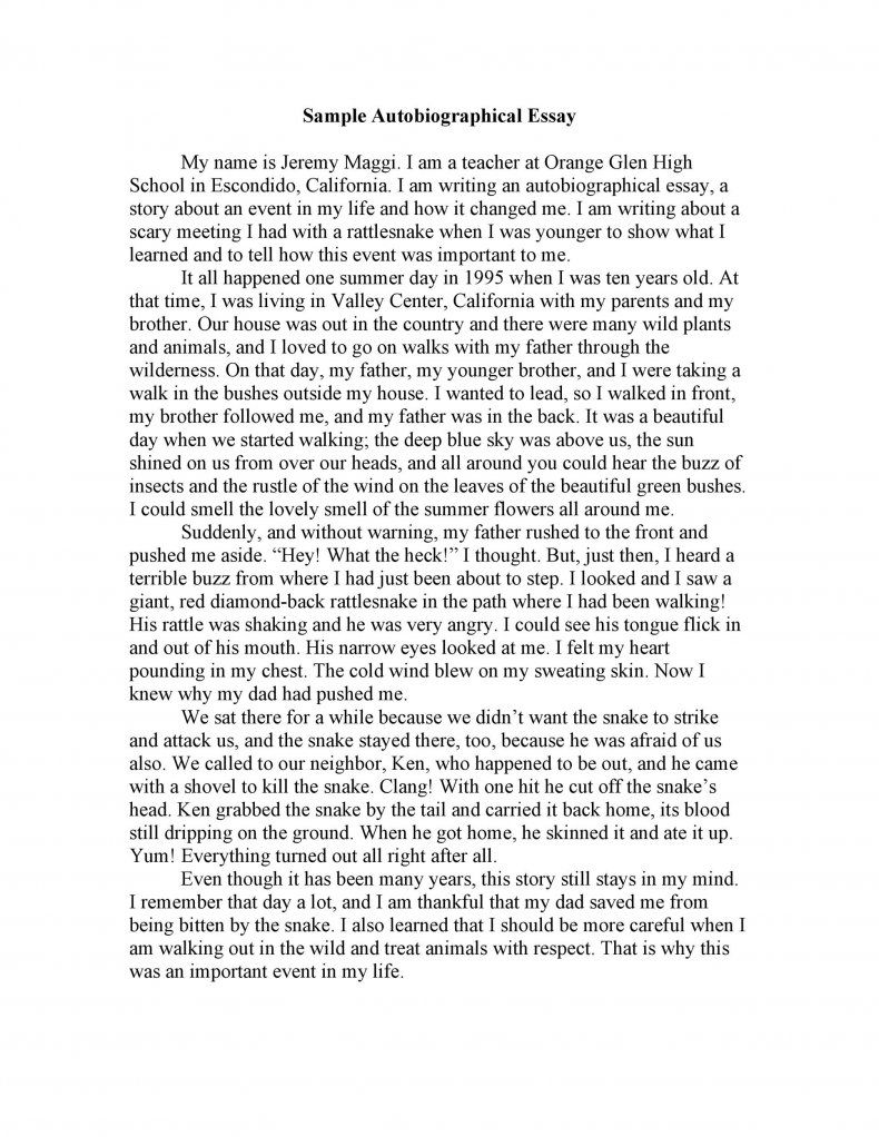 Download Autobiography Template 15 Essay Writing Autobiographical Example Brainly For College