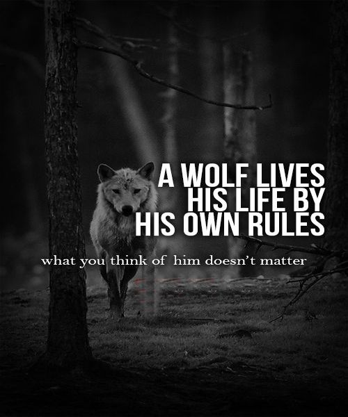 A Wolf Lives His Life