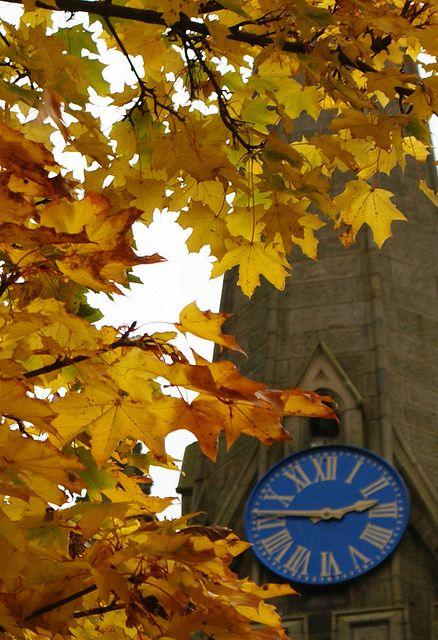 Autumn in Preston, England