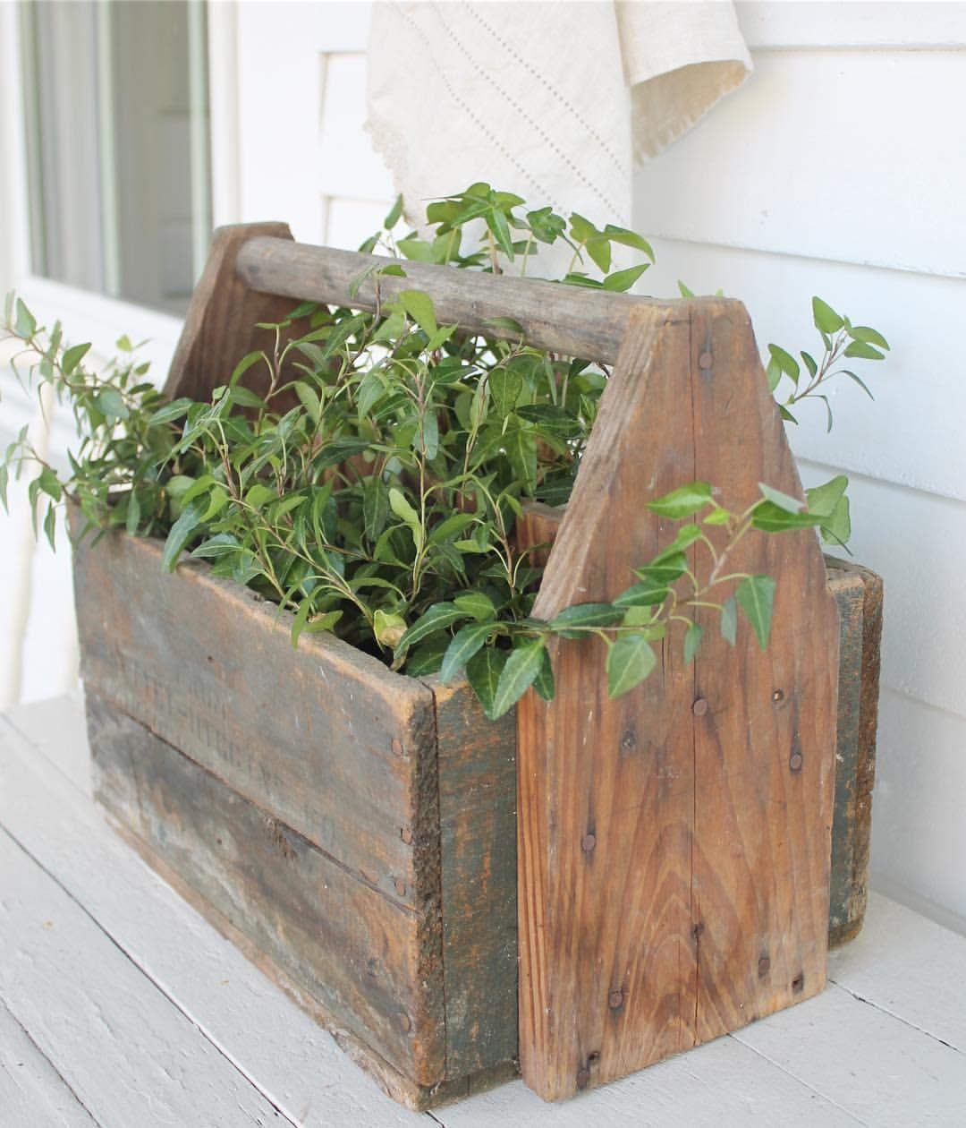 Pin : @morganreidy   Best indoor plants, Decorating coffee ...