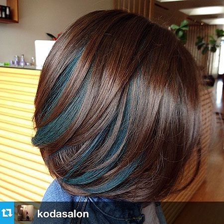 Chestnut Brown with Chunky Black Steaks.  A nice Fall/Winter color. 100 New Bob Hairstyles 2016 – 2017 - Love this Hair