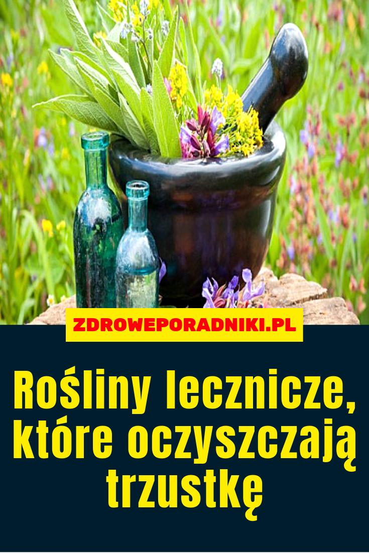 Pin By Wandzia S On Zdrowie I Dieta Plants