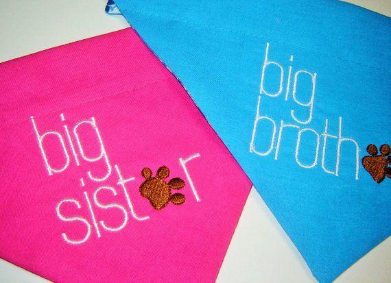 dcf1f7252f9 Big Brother or Big Sister Embroidered Dog Scarf Over the Collar Dog Bandana