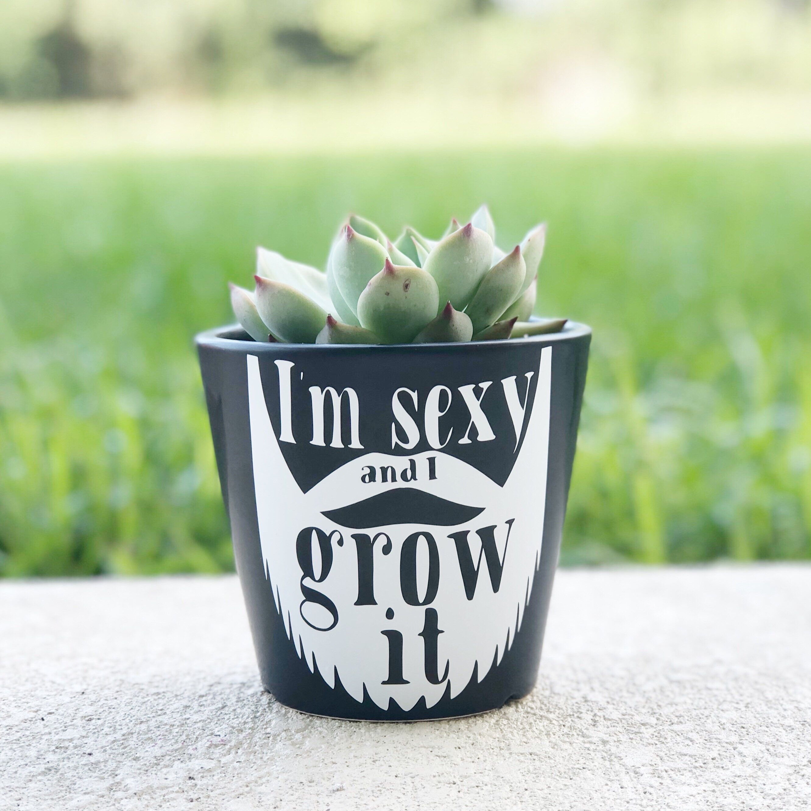 Excited To Share The Latest Addition To My Etsy Shop Dad Gift Beard Puns Funny Father S Day Planter Pl With Images Vintage Flower Pots Flower Pots Container Gardening
