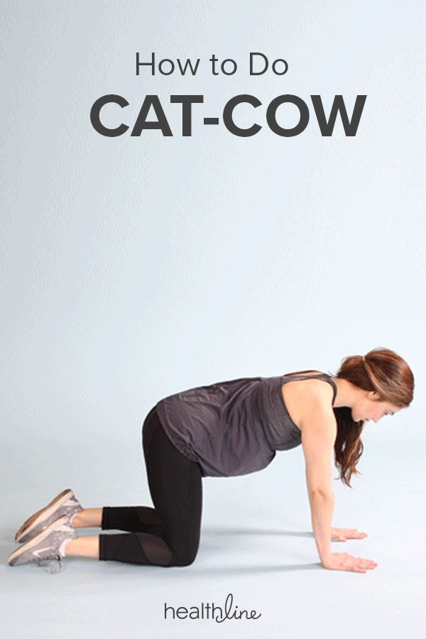 How to Do Cat-Cow Pose and Stretch the Muscles in Your ...