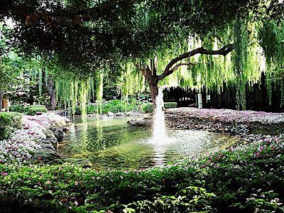 8f2d298c6da6729f9b000a692b9592b8 - Freedom Hall And Gardens Wedding Photos