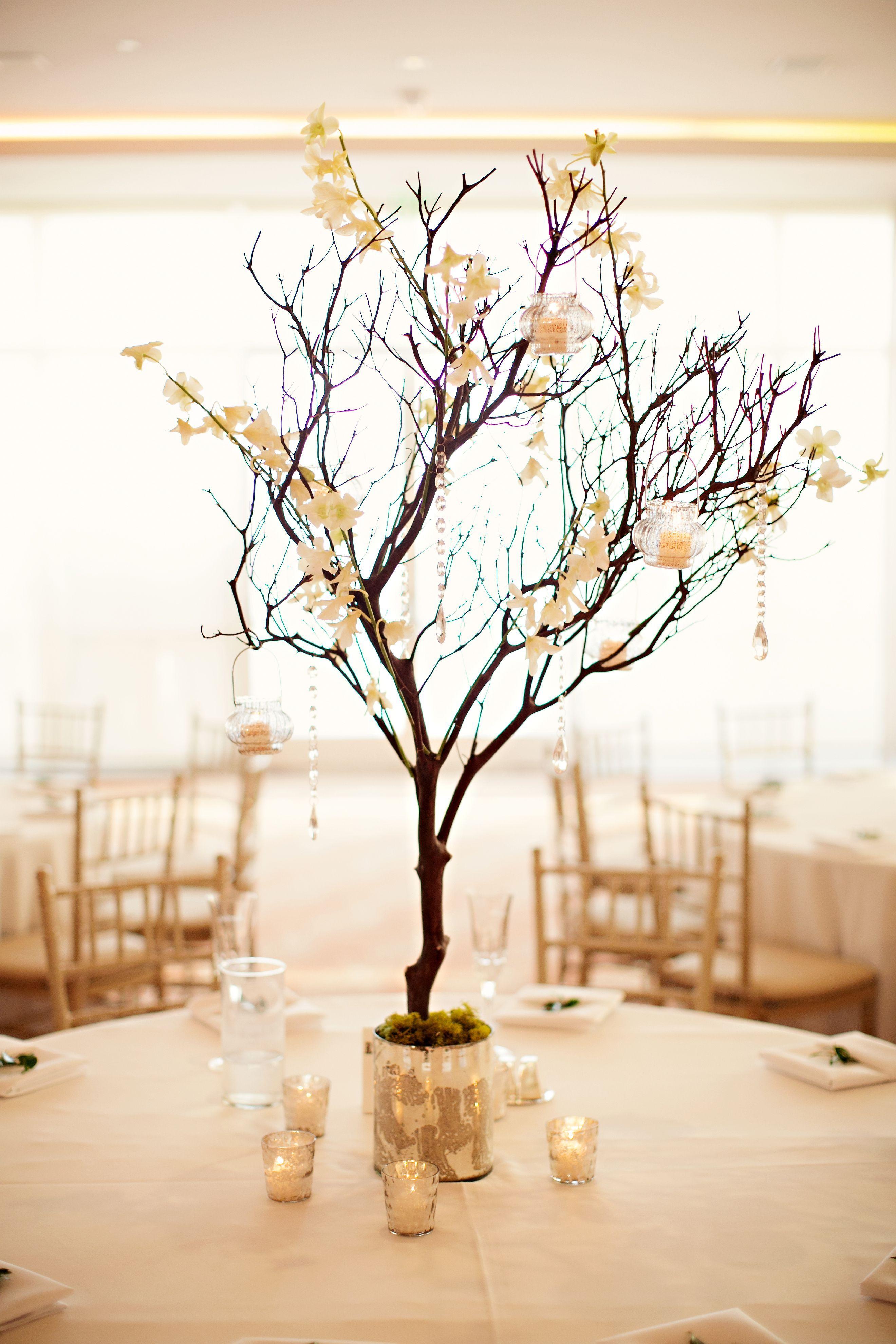 Nice 25 Best Manzanita Tree Centerpiece Vishing Tree Ideas http ...