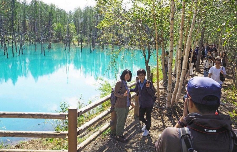 「青い池」青が戻る 立ち入り制限解除 台風被害の景勝地