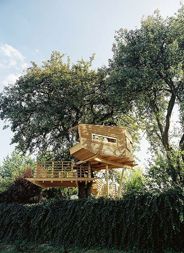 Baumraum | Baumhausu2013Hotel Elbinselhof Krautsand | Treehouse | Pinterest |  Treehouse, Tree Houses And Bremen