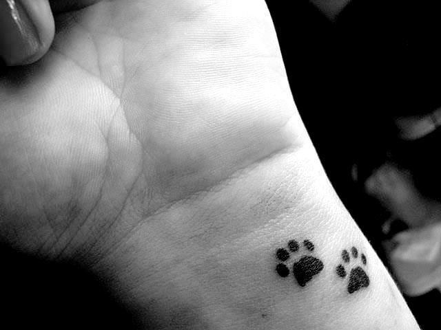 Tatuagem De Patinha De Cachorro Delicada No Pulso Tatus