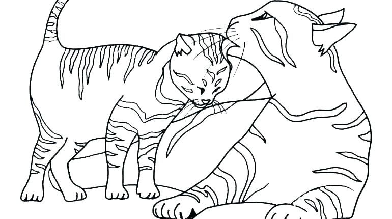 Cute Kitten Coloring Pages Idea Cat Coloring Page Coloring