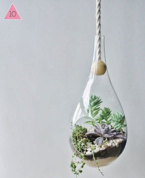 design is mine : isn't it lovely?: TEN LOVELY VESSELS TO HOLD YOUR SUCCULENTS.