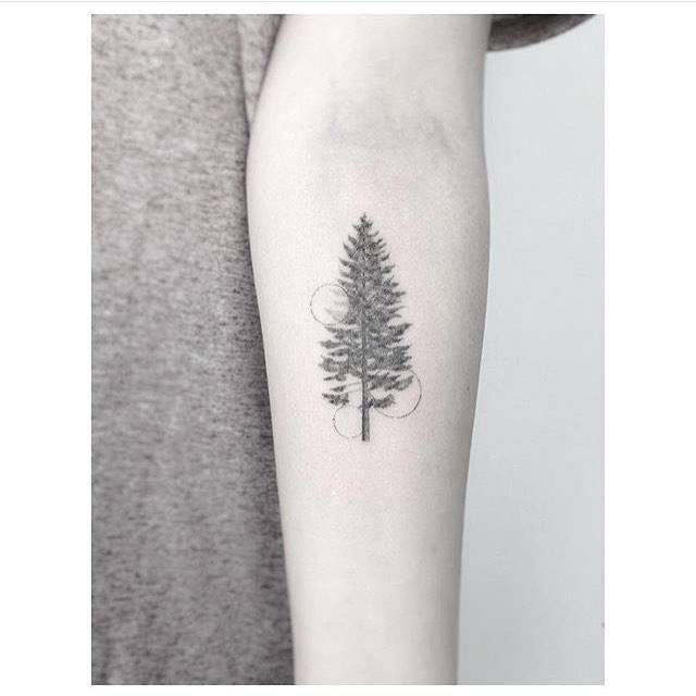 c16e0cea6171c Fine line pine tree tattoo on the left inner forearm. Tattoo artist: Jakub  Nowicz