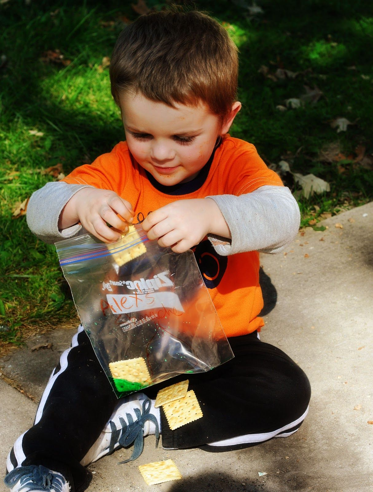 Homeschool Preschool Digestive System