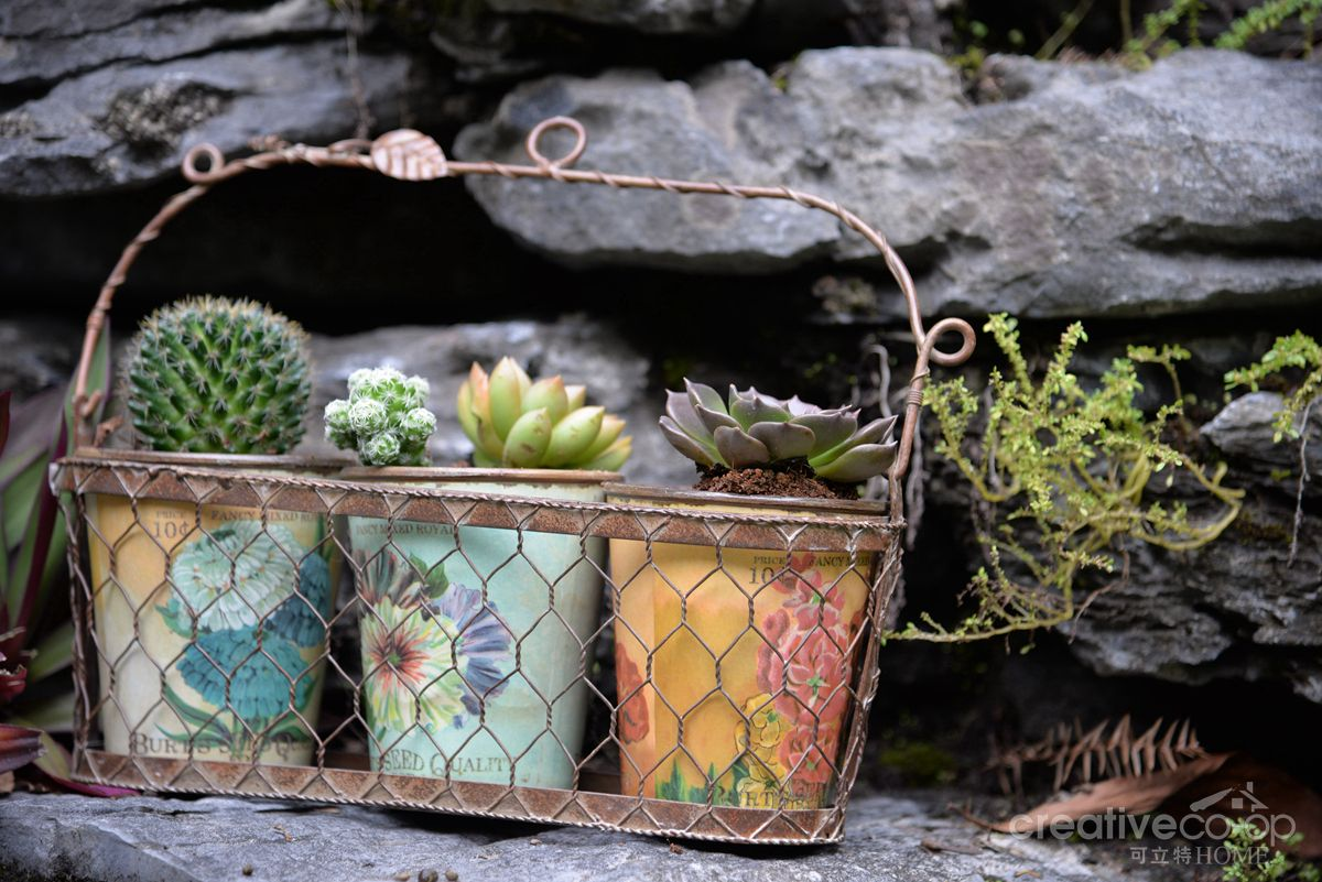 Planters Vintage Seed Label Pots in Wire Basket ☆ Creative Co-Op Home