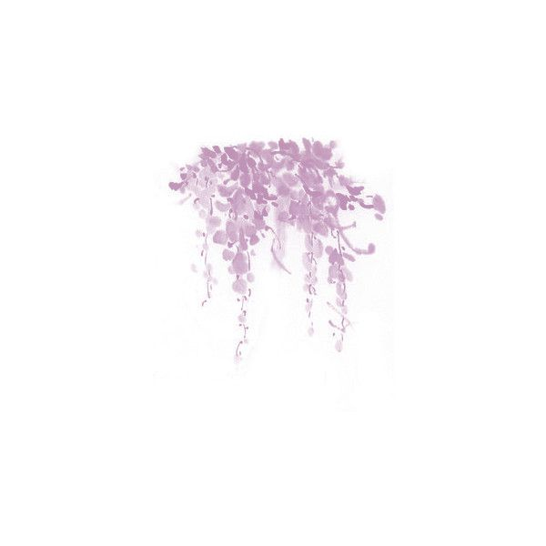 wisteria ❤ liked on Polyvore featuring flowers, backgrounds, fillers, decorations and plants