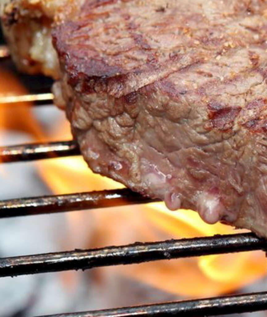 NICHTS FÜR GEMÜSEESSER Wer grillt, ist frei! Eine Streitschrift für die Lust am Fleischessen