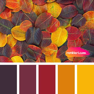 Yaprak Sari Turuncu Bordo Sonbahar Renkler Renkleri Sac Sac Sactasarim Makyaj Fall Color Combinations Color Balance Color Schemes