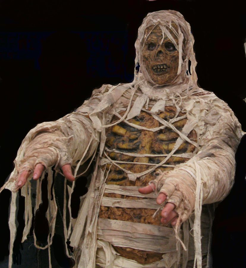 How to Make a Mummy Costume #stepbystep