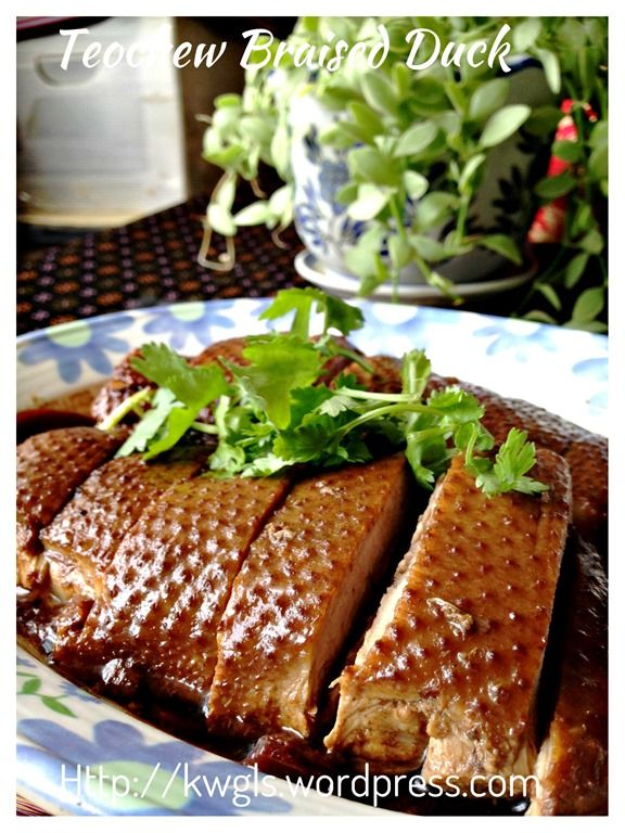 Teochew braised duck or lor ark braised duck teochew braised duck or lor ark braised duck restaurants and food forumfinder