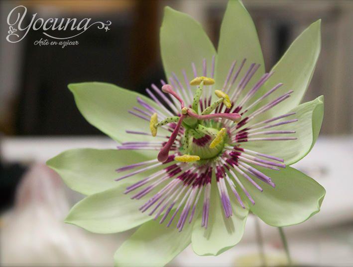 Flor De La Pasion En Pasta De Goma Passion Flower Gumpaste Gum Paste Flowers Sugar Paste Flowers Fondant Flowers