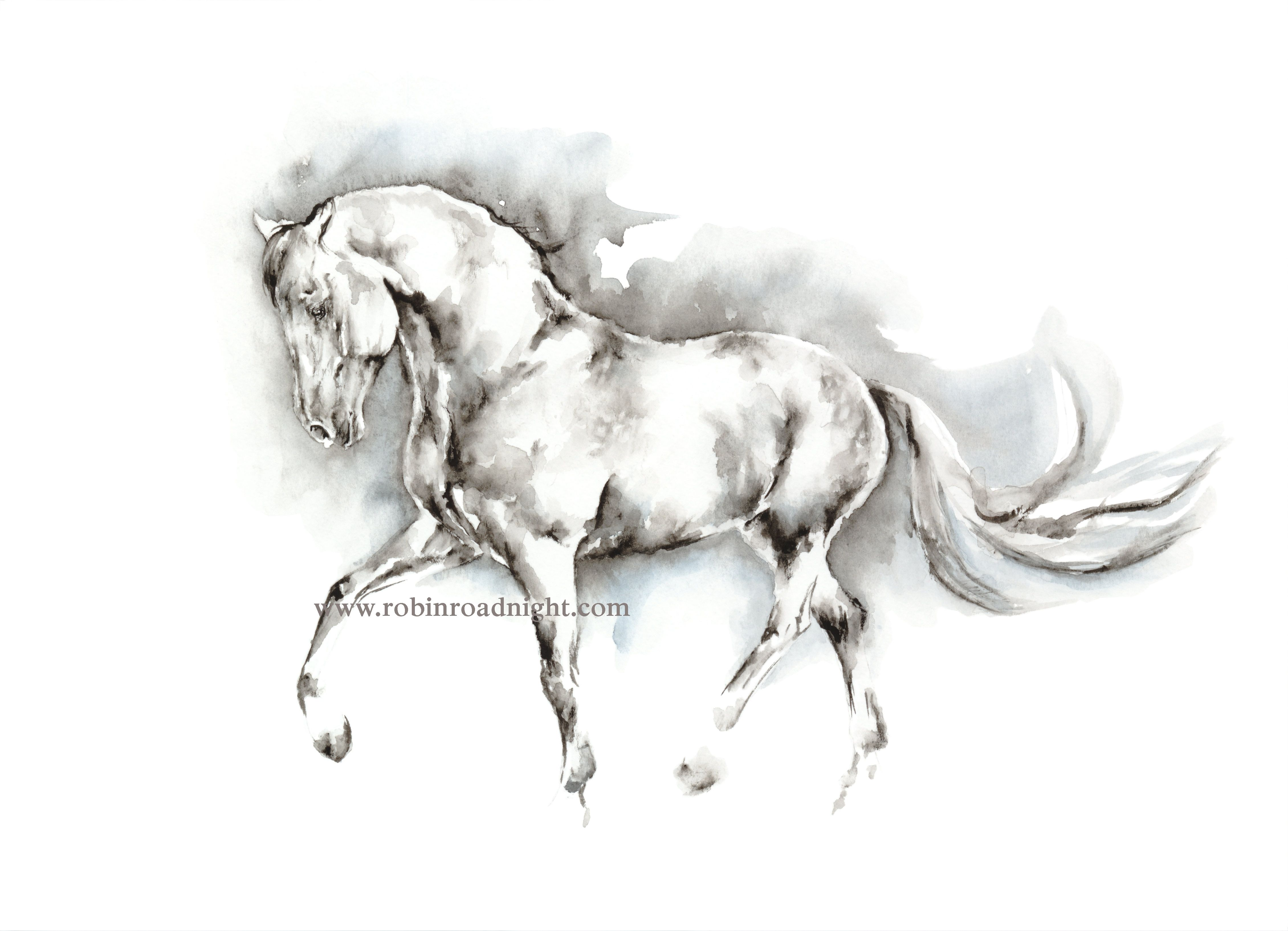 Original watercolour painting of a grey horse trotting. By ...