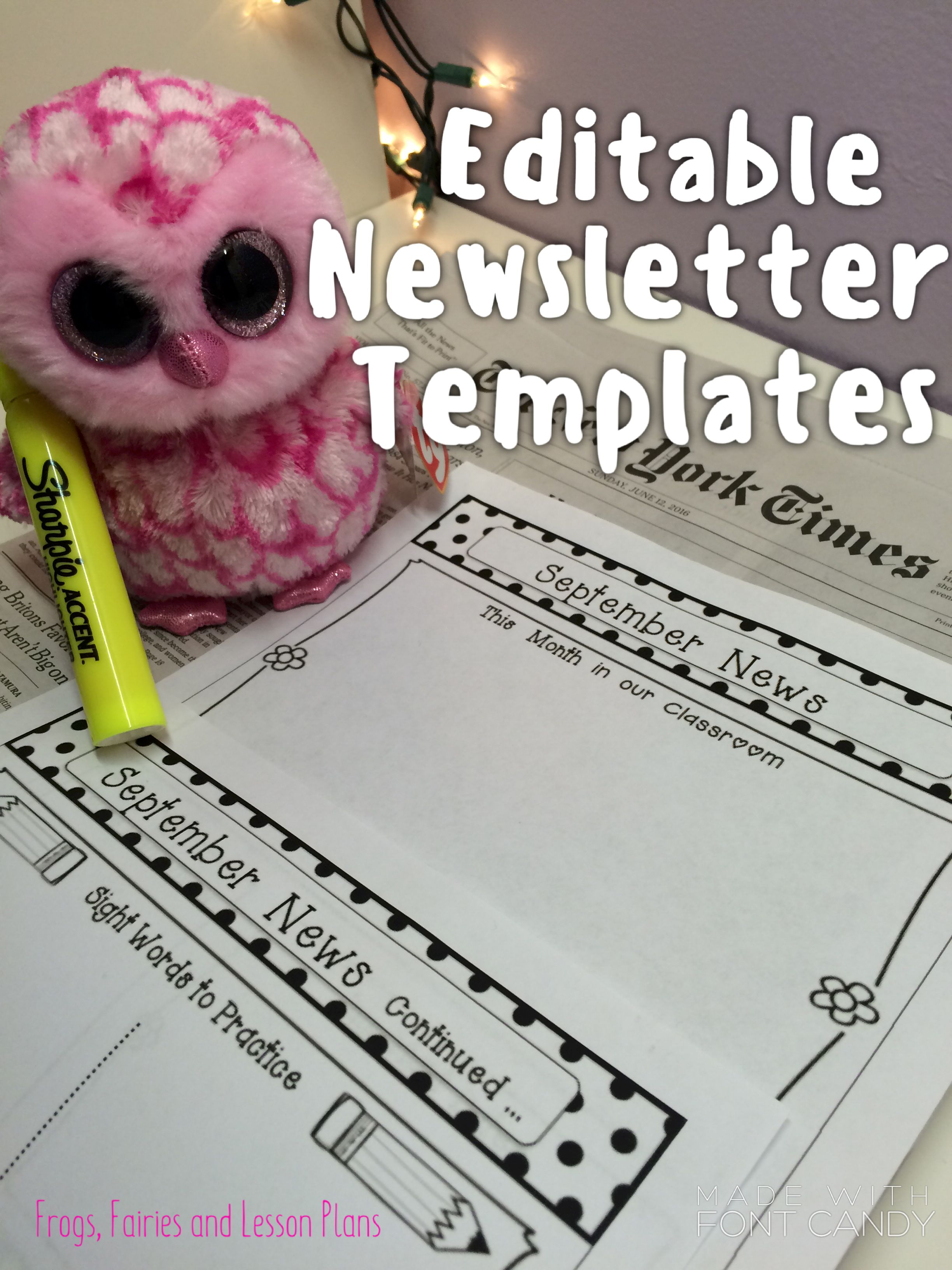 Editable Monthly Newsletter Templates  Monthly Newsletter